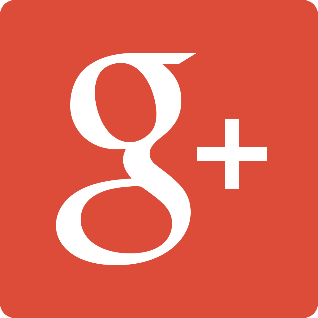 Google Icon Plus